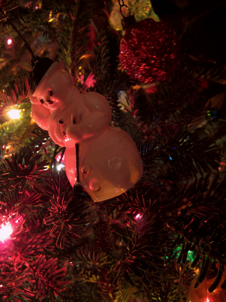 This is one of my favorite ornaments.